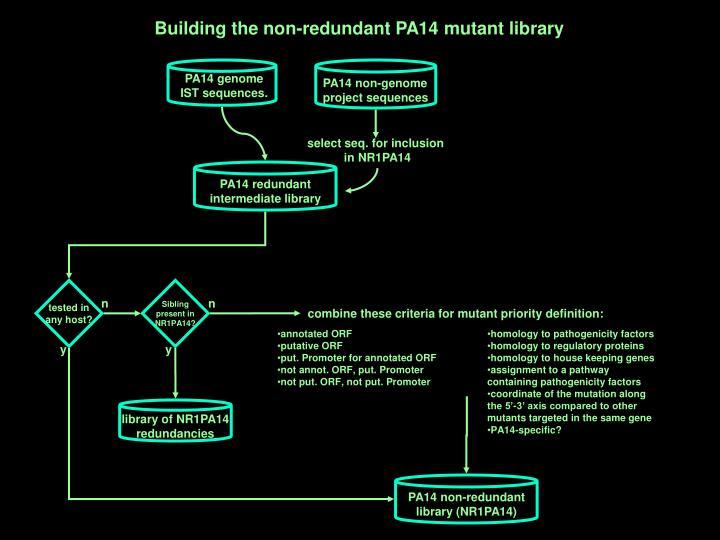 PA14 genome