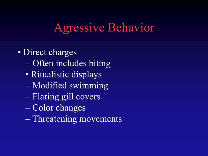 Agressive Behavior