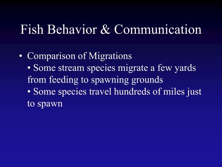 Fish Behavior & Communication