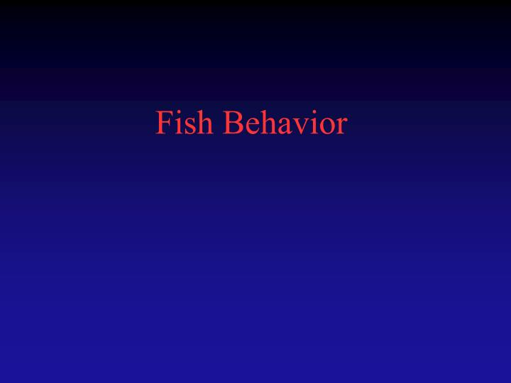 Fish behavior