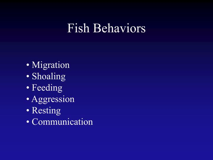 Fish Behaviors