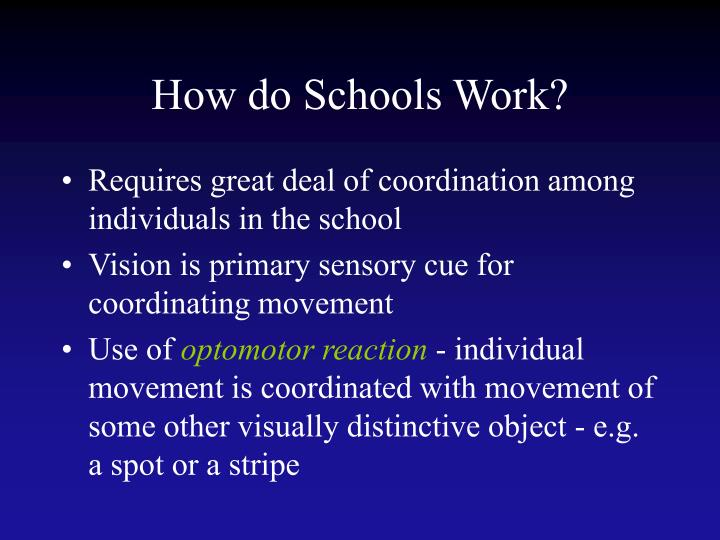 How do Schools Work?