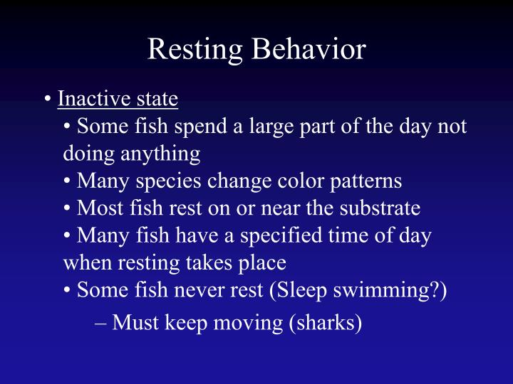 Resting Behavior