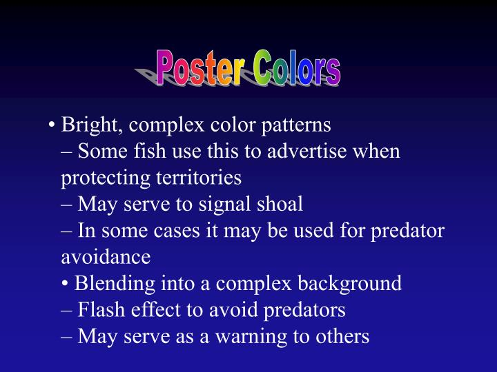 Poster Colors