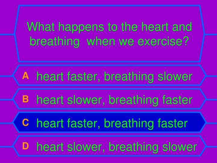 What happens to the heart and breathing  when we exercise?