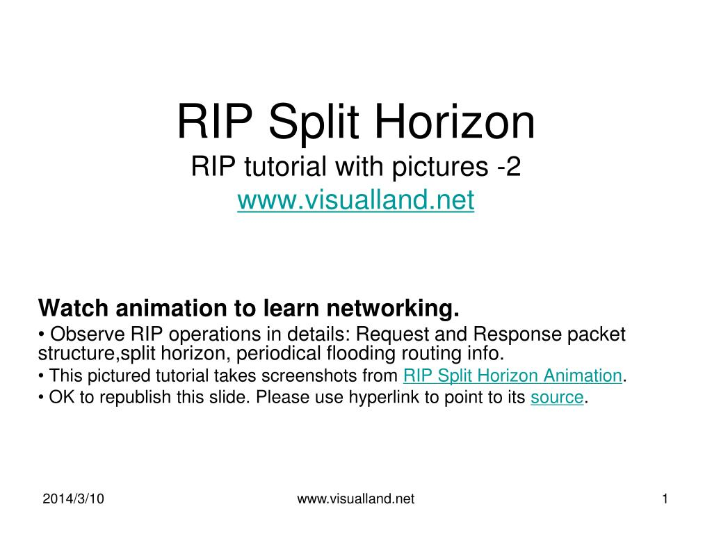 RIP Split Horizon