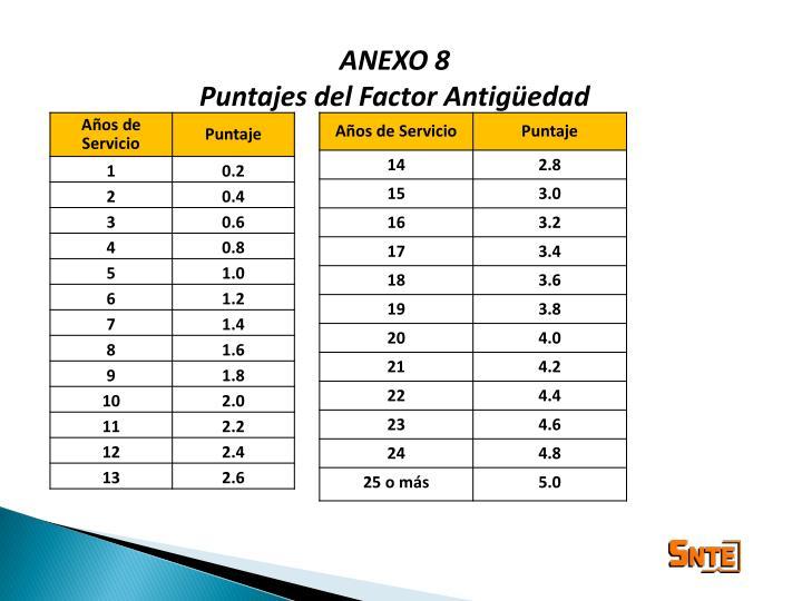 ANEXO 8
