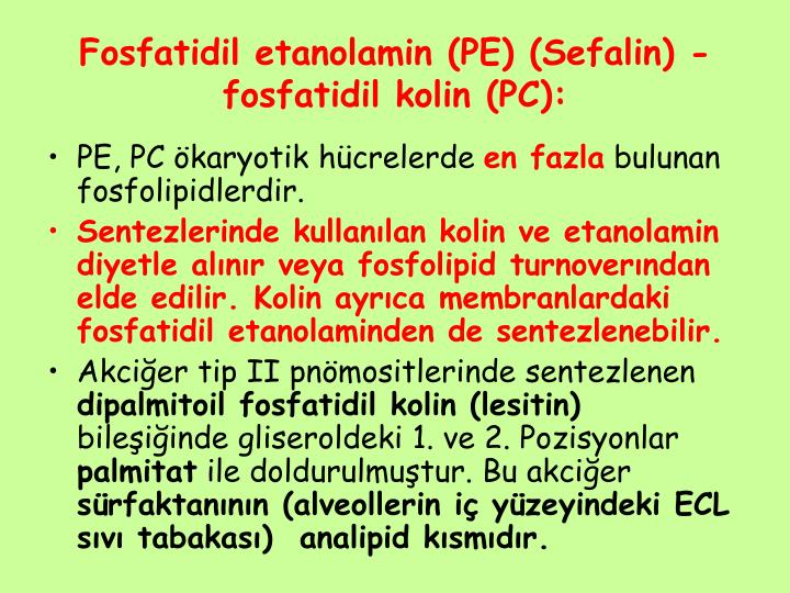 Fosfatidil etanolamin (PE) (Sefalin) - fosfatidil kolin (PC):