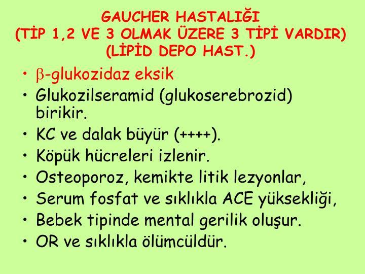 GAUCHER HASTALIĞI