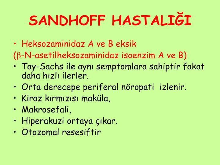 SANDHOFF HASTALIĞI