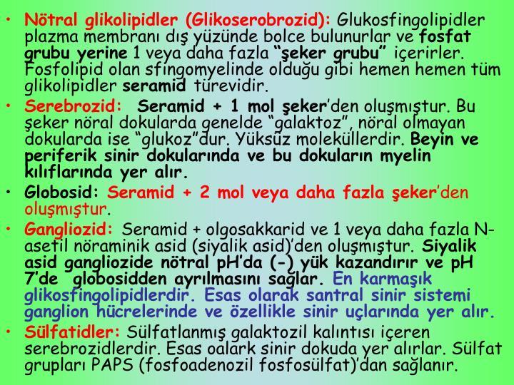 Nötral glikolipidler (Glikoserobrozid):