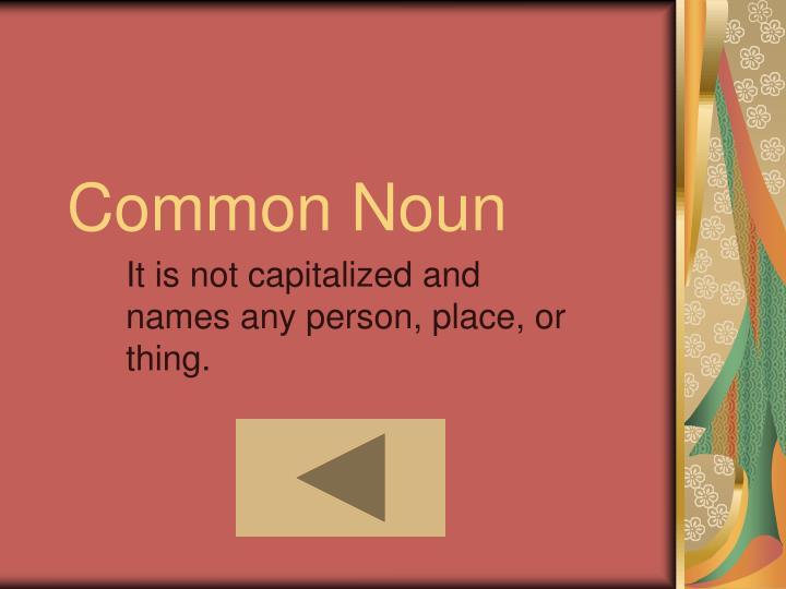 Common Noun