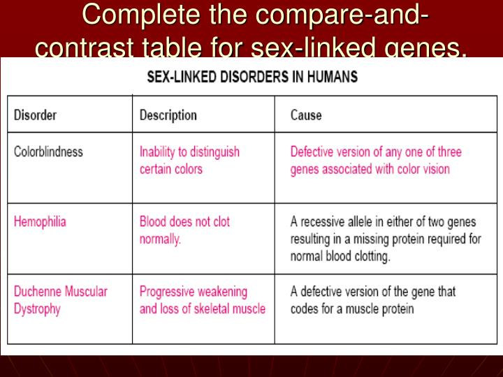 contrast the sex chromosomes found in human females and males in Boston
