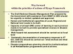 way forward within the priorities of actions of hyogo framework