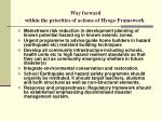 way forward within the priorities of actions of hyogo framework1
