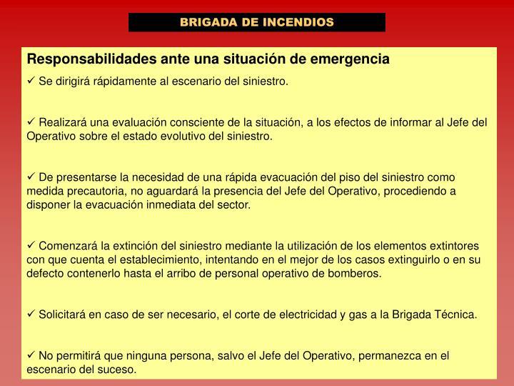 BRIGADA DE INCENDIOS