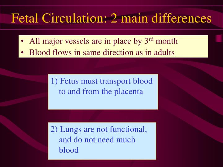 1) Fetus must transport blood to and from the placenta
