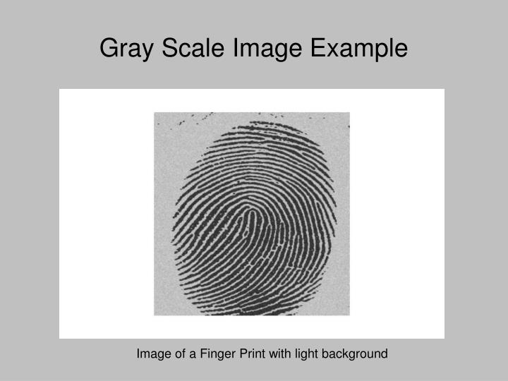Gray Scale Image Example