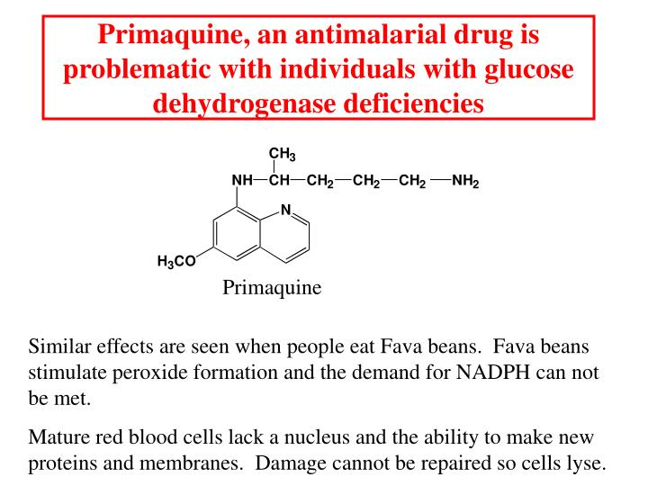 Primaquine, an antimalarial drug is problematic with individuals with glucose dehydrogenase deficiencies