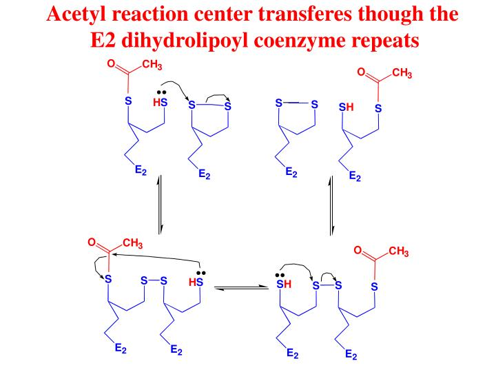 Acetyl reaction center transferes though the