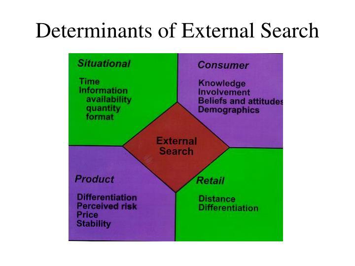 Determinants of External Search