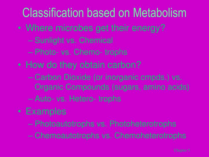 Classification based on Metabolism