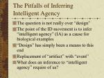 the pitfalls of inferring intelligent agency