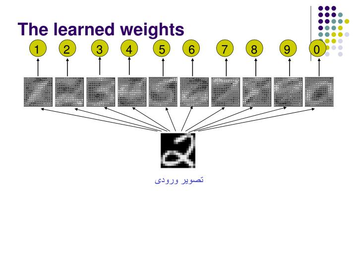 The learned weights