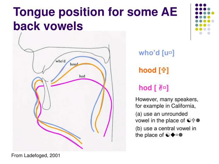 Tongue position for some AE back vowels