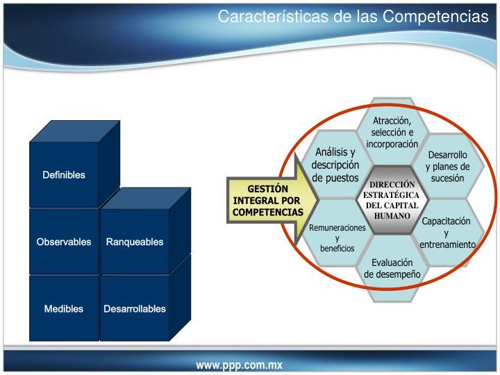 Características de las Competencias