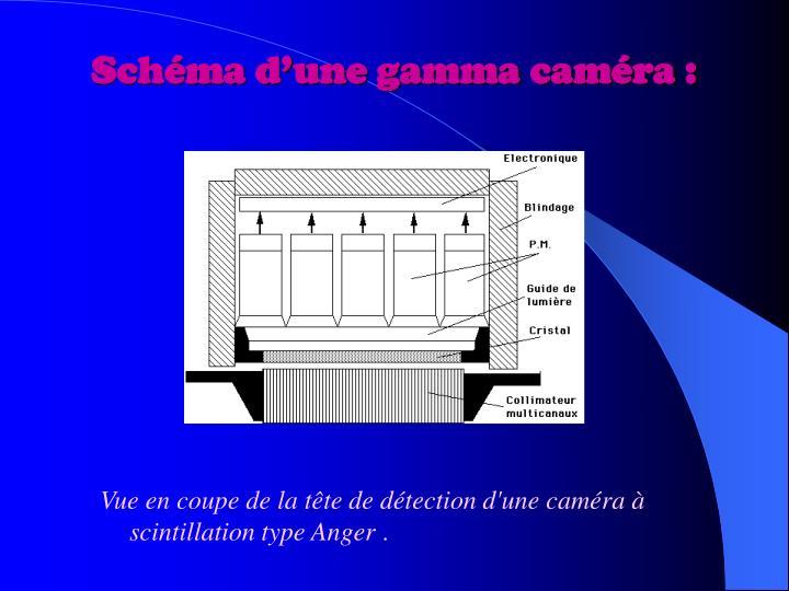 Schéma d'une gamma caméra :