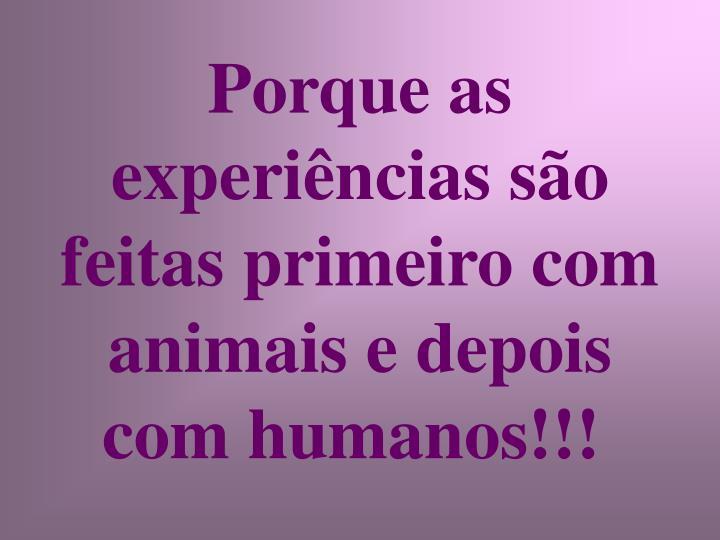 Porque as experiências são feitas primeiro com animais e depois