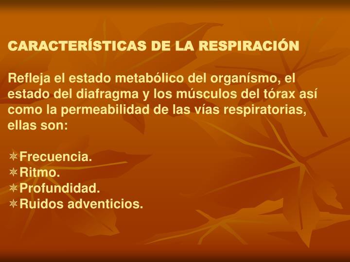 CARACTERÍSTICAS DE LA RESPIRACIÓN