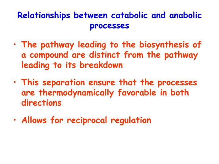 Relationships between catabolic and anabolic processes