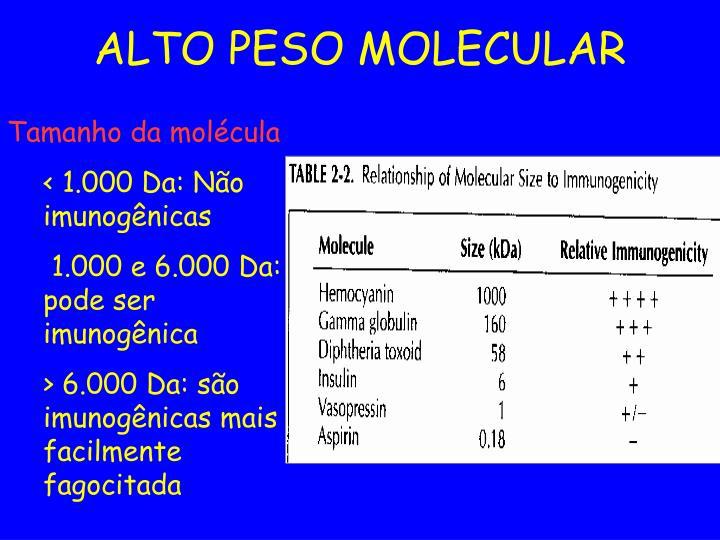 ALTO PESO MOLECULAR