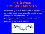 ant genos timo dependentes