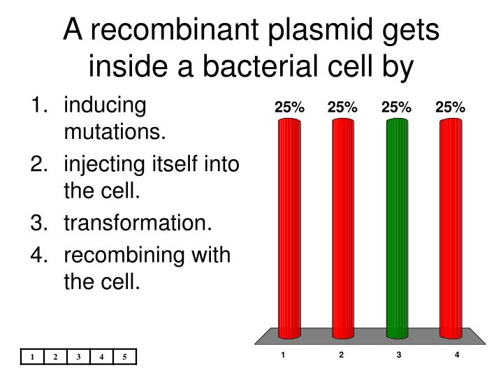 A recombinant plasmid gets inside a bacterial cell by