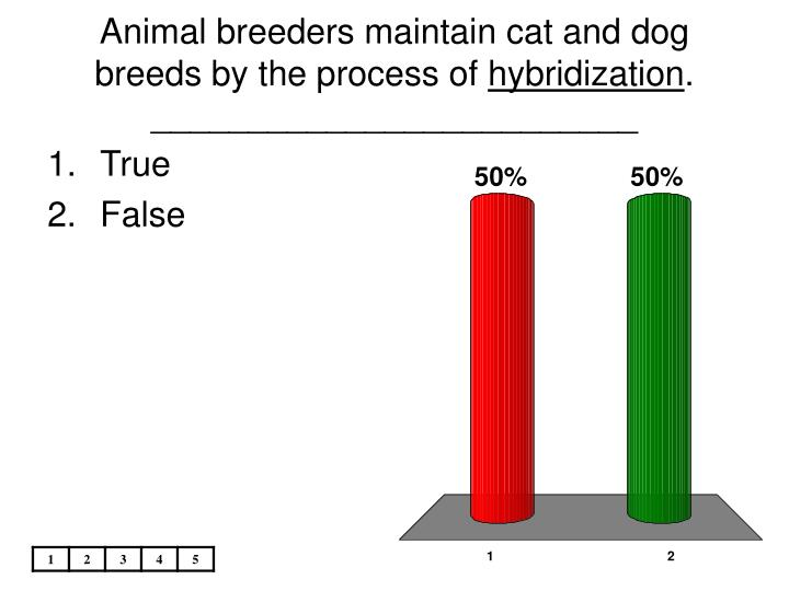 Animal breeders maintain cat and dog breeds by the process of