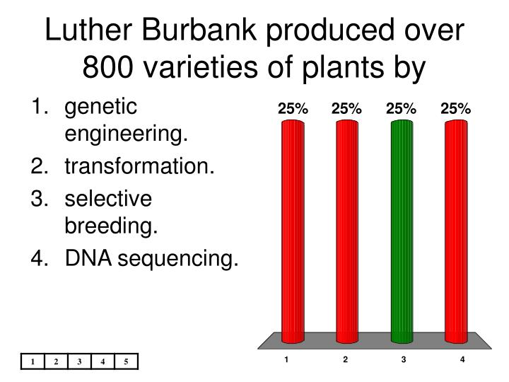 Luther Burbank produced over 800 varieties of plants by