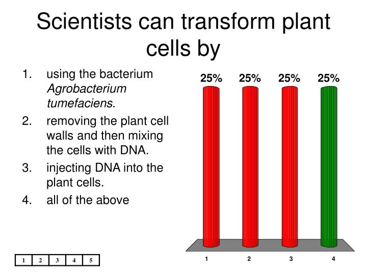 Scientists can transform plant cells by