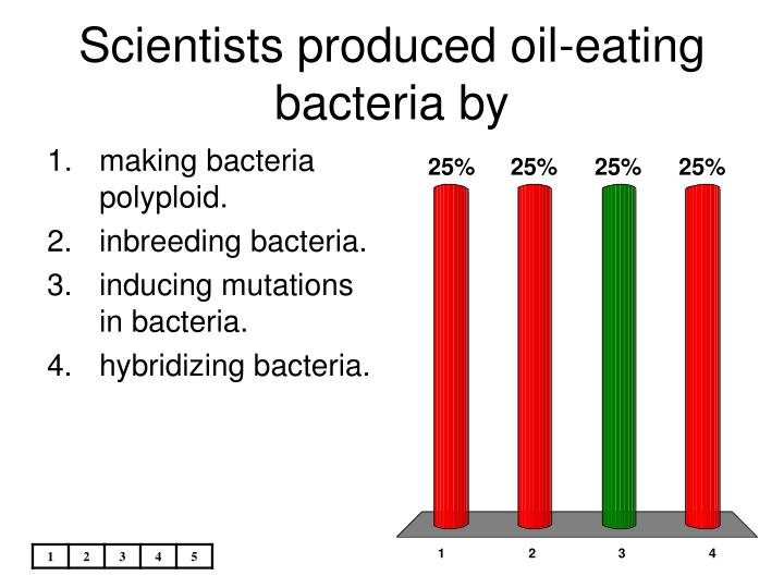 Scientists produced oil-eating bacteria by