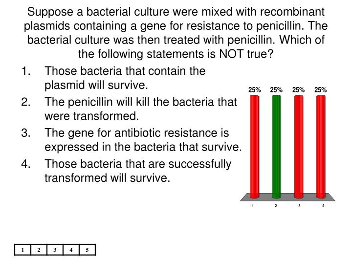 Suppose a bacterial culture were mixed with recombinant plasmids containing a gene for resistance to penicillin. The bacterial culture was then treated with penicillin. Which of the following statements is NOT true?
