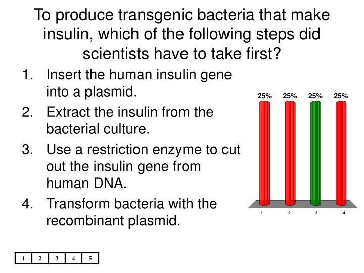 To produce transgenic bacteria that make insulin, which of the following steps did scientists have to take first?
