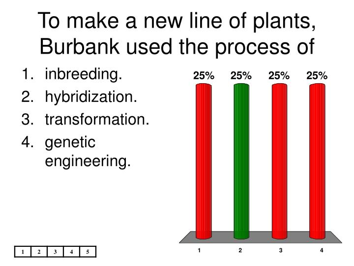To make a new line of plants, Burbank used the process of