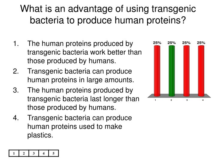 What is an advantage of using transgenic bacteria to produce human proteins?