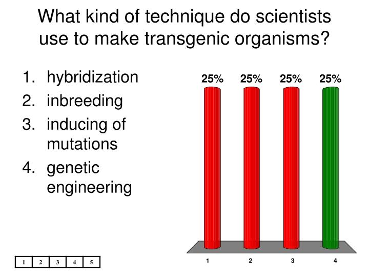 What kind of technique do scientists use to make transgenic organisms?
