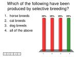 which of the following have been produced by selective breeding