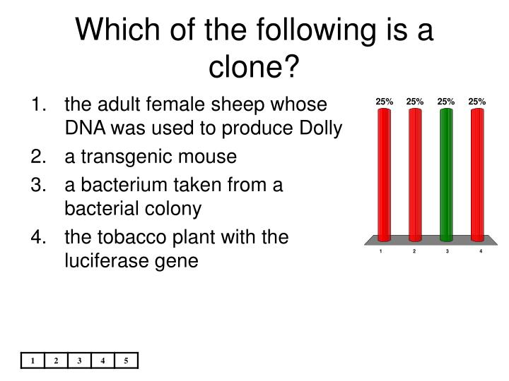 Which of the following is a clone?