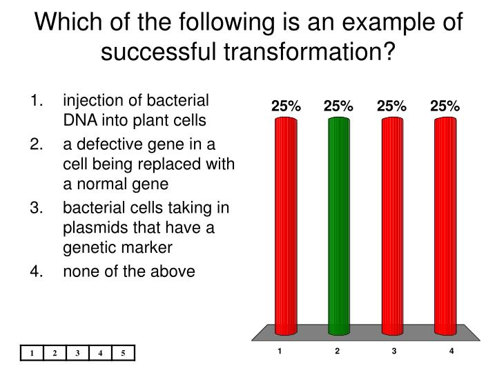 Which of the following is an example of successful transformation?