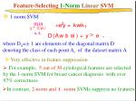 feature selecting 1 norm linear svm